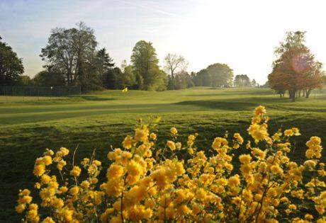 sunrise golf fairway