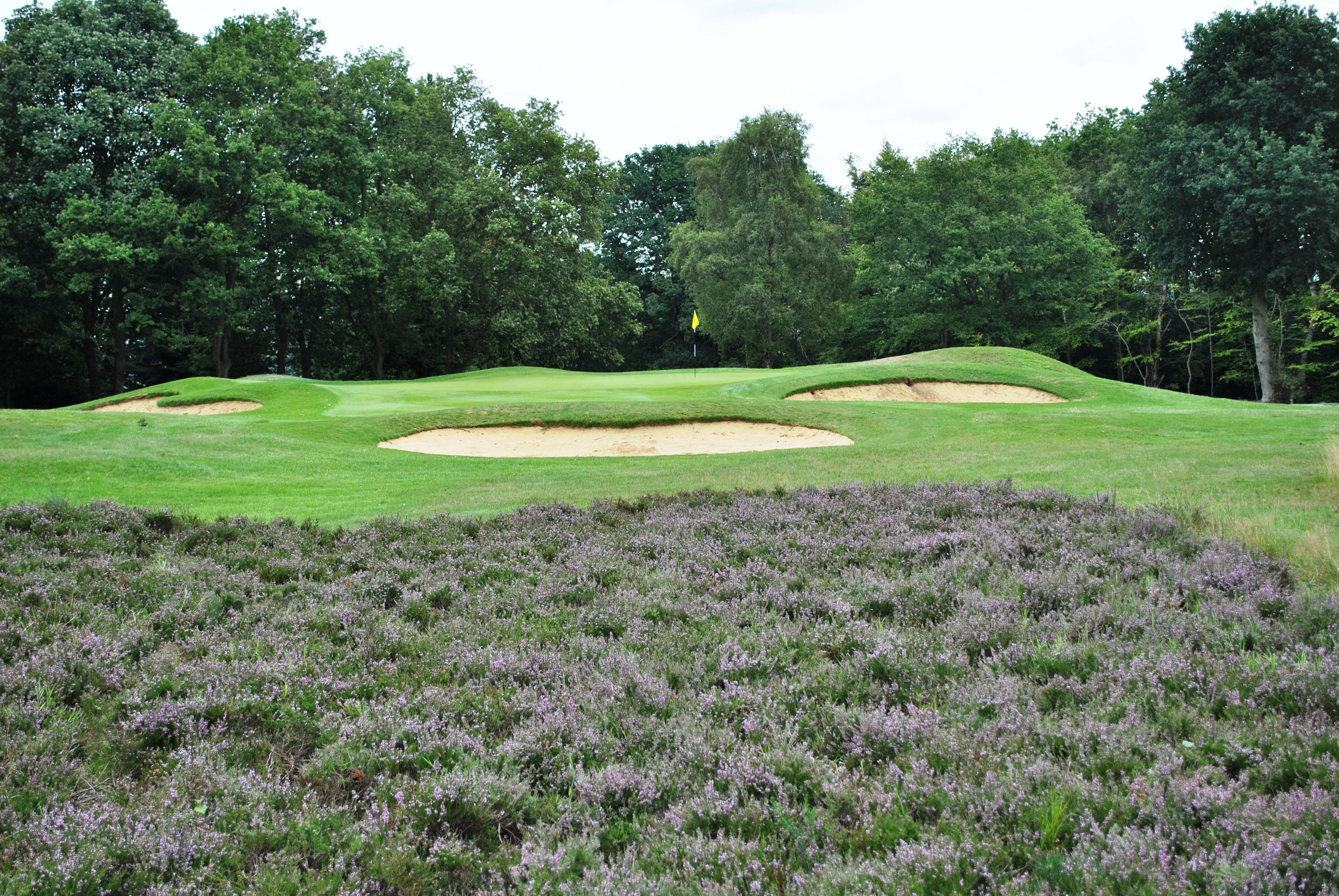 10th high Golf course