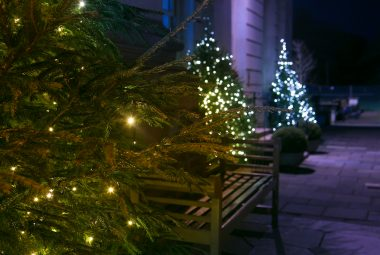 Christmas Gallery Moor Park